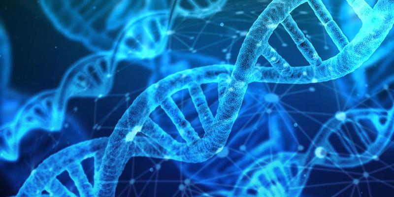 MZ-genetica